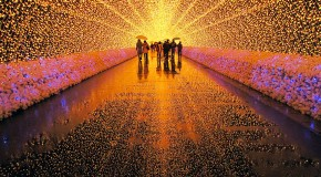 Tunnel of Lights Made of Millions of LEDs in Japan